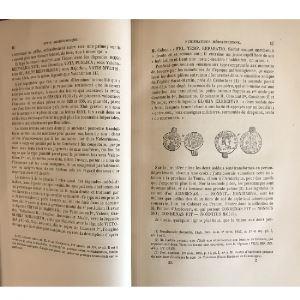 Revue Archéologique   année 1865   2 tomes